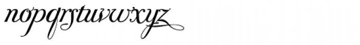Donna Bodoni Ce Script Font LOWERCASE