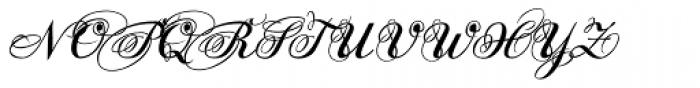 Donna Julia Font UPPERCASE