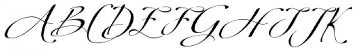 Donna Lena Slanted Font UPPERCASE