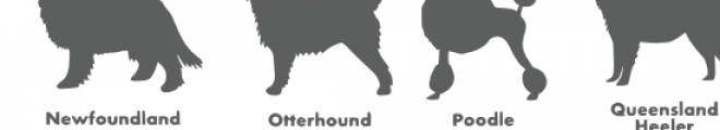 dog breed silhouettes font Font UPPERCASE