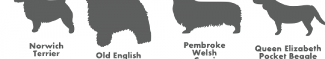 dog breed silhouettes font Font LOWERCASE