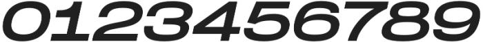 Dreadnoughtus Regular Italic otf (400) Font OTHER CHARS