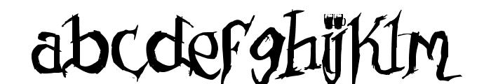 Drunked Serif Font LOWERCASE