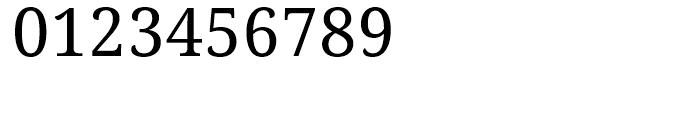 Droid Serif WGL Regular Font OTHER CHARS