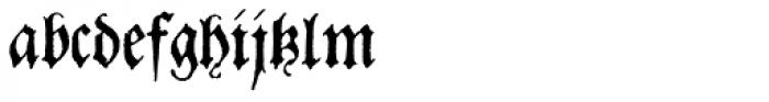 Dracena Font LOWERCASE