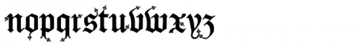 Drago Curly Font LOWERCASE