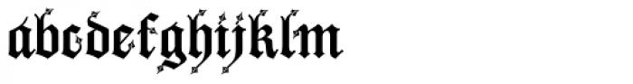 Drago Font LOWERCASE