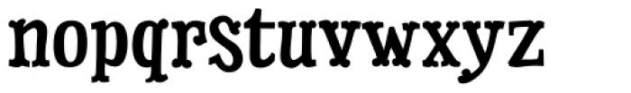 Dry Cowboy Font LOWERCASE
