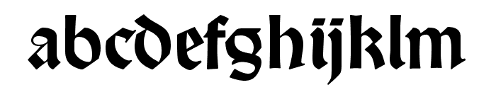 DS Wallau OsF Font LOWERCASE