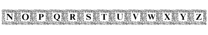 DSInitials Normal Font UPPERCASE