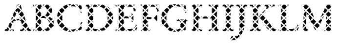 DTC Garamond M14 Font UPPERCASE
