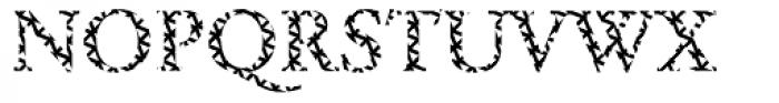 DTC Garamond M16 Font UPPERCASE
