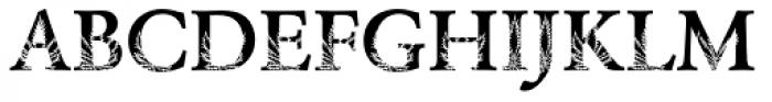 DTC Garamond M35 Font UPPERCASE