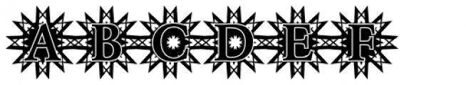 DTC Garamond M50 Font UPPERCASE