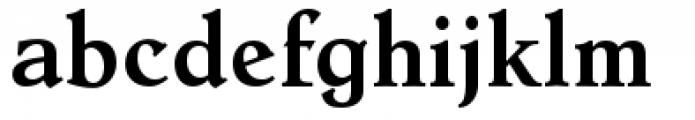 Dutch Mediaeval Pro Bold Regular Font LOWERCASE