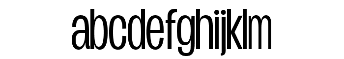 Duera PERSONAL USE Condensed Light Font LOWERCASE