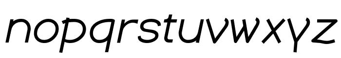 Dustismo  Italic Font LOWERCASE