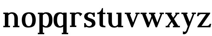 Dustismo Roman Bold Font LOWERCASE
