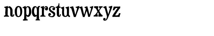 Duality Regular Font LOWERCASE
