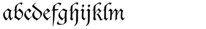 Duc De Berry Dfr Font LOWERCASE