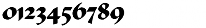 Ductus Bold Font OTHER CHARS
