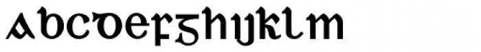 Duibhlinn Bold Font LOWERCASE