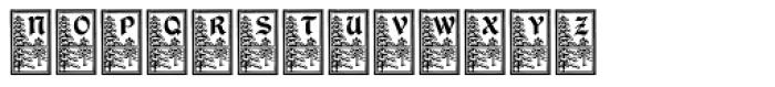 DurerGotischCapitals Font LOWERCASE
