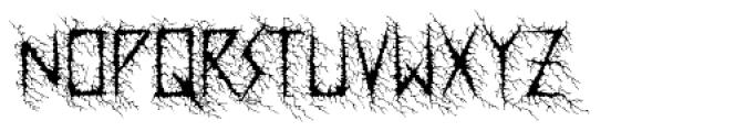 Dusk Swash Font UPPERCASE