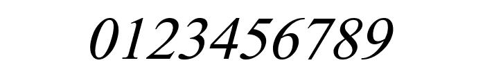 DV-TTSurekhEN-Italic Font OTHER CHARS