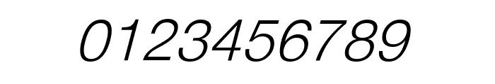 DV-TTYogeshEN Italic Font OTHER CHARS