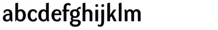 DynaGrotesk D Font LOWERCASE