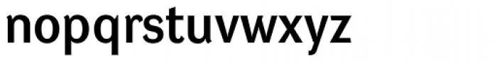 DynaGrotesk L Bold Font LOWERCASE