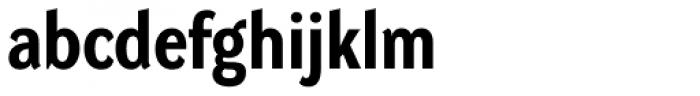 DynaGrotesk Pro 32 Bold Font LOWERCASE