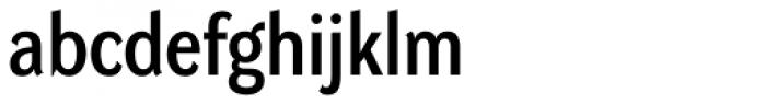 DynaGrotesk Pro 33 Font LOWERCASE