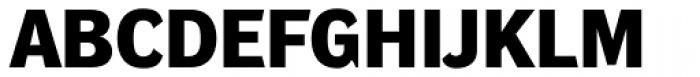 DynaGrotesk Pro 43 Bold Font UPPERCASE