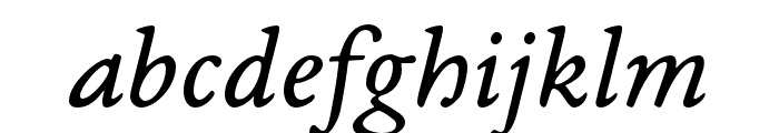 EB Garamond 08 Italic Font LOWERCASE