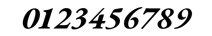 EB Garamond Bold Italic Font OTHER CHARS