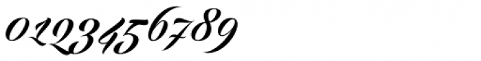 Echinos Park Script Font OTHER CHARS