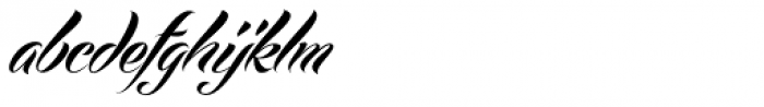 Echinos Park Script Font LOWERCASE