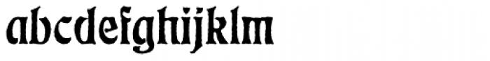 Eckmann Antique D Font LOWERCASE