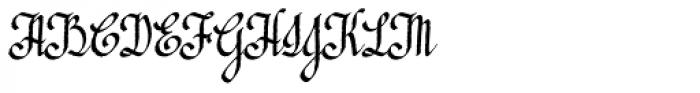 Edil Script Font UPPERCASE