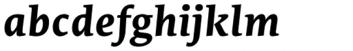 Edit Serif Pro Bold Italic Font LOWERCASE