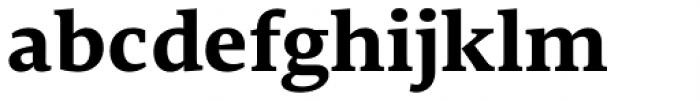 Edit Serif Pro Bold Font LOWERCASE