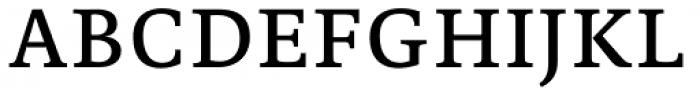 Edit Serif Pro Regular Font UPPERCASE
