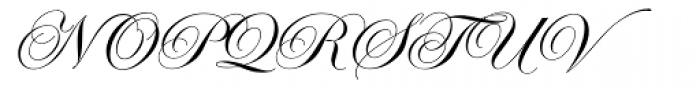 Edwardian Script Font UPPERCASE