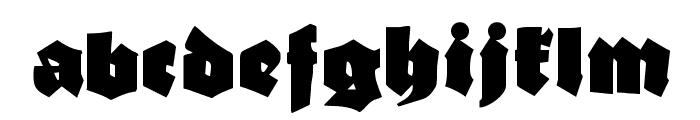 EFN Czarny Font LOWERCASE