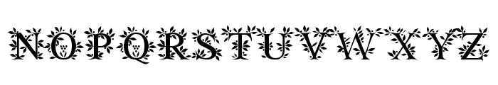 EFN Zielony Font Font UPPERCASE