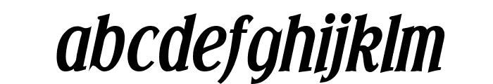 Effloresce Bold Italic Font LOWERCASE
