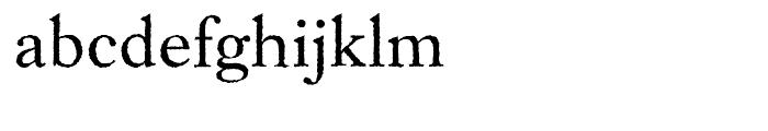 EF Caslon Rough H Regular Font LOWERCASE