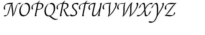 EF Elysa Light Italic Swash 1 Font UPPERCASE